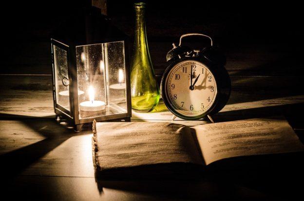 Wortschubse Nachteule - Pixabay